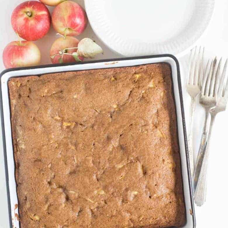 The Best Easy Apple Cake — Bless this Mess