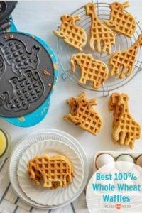 Best Homemade Whole Wheat Waffles Recipe | Simple Waffle Recipe