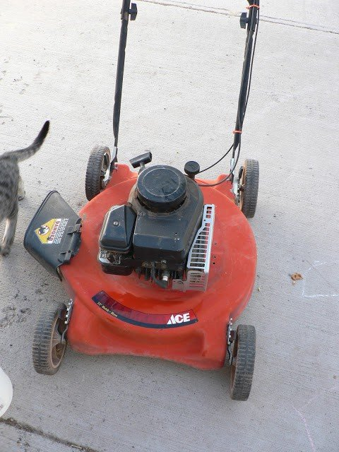 A used red push lawnmower on concrete