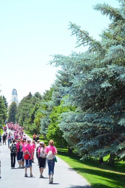 A group of people with pink shirts and backpacks walking on a path lined with pine trees