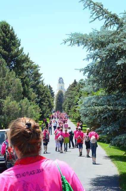 A group of people wearing pink shirts and backpacks talking on a tree-lined path toward a chapel