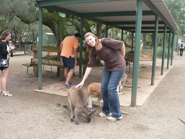 A woman petting kangaroos at an animal park