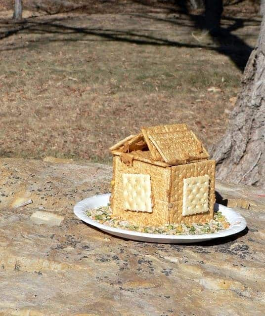How to: Homemade Bird Feeder