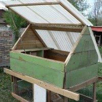 DIY Backyard Chicken Coup
