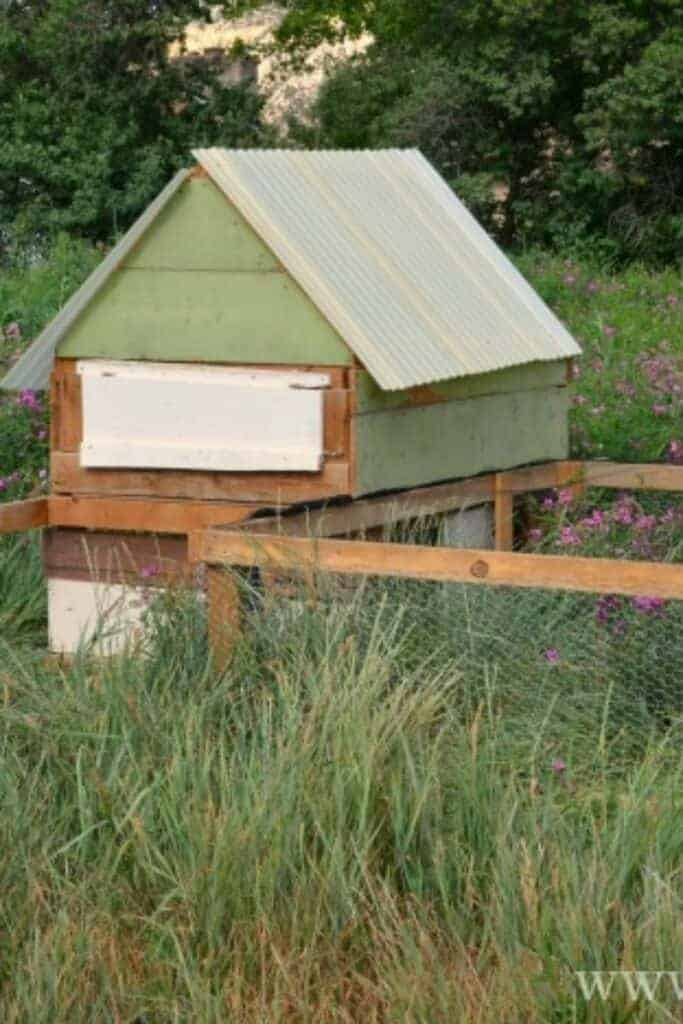 A green and wood chicken coop with an adjoining fenced-in outdoor space in a grassy field