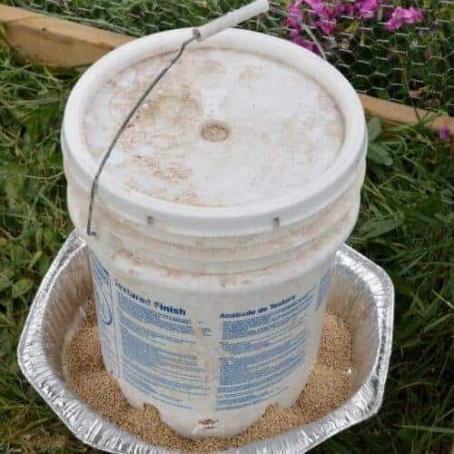 DIY Chicken Waterer and Feeder from 5-gallon Buckets