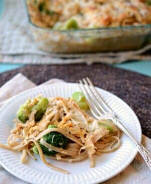 Plate of chicken and broccoli tetrazzini