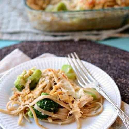 Chicken and Broccoli Tetrazzini on a white plate