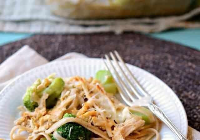 Plate of chicken and broccoli tetrazzini