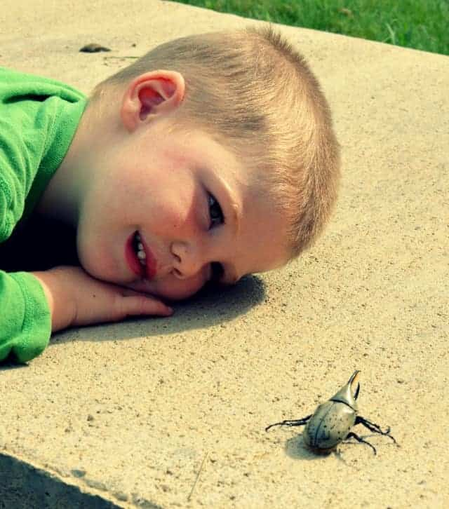 boyfriend and his bug