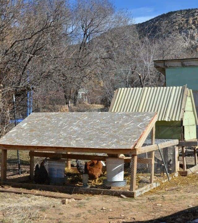 a chicken shack