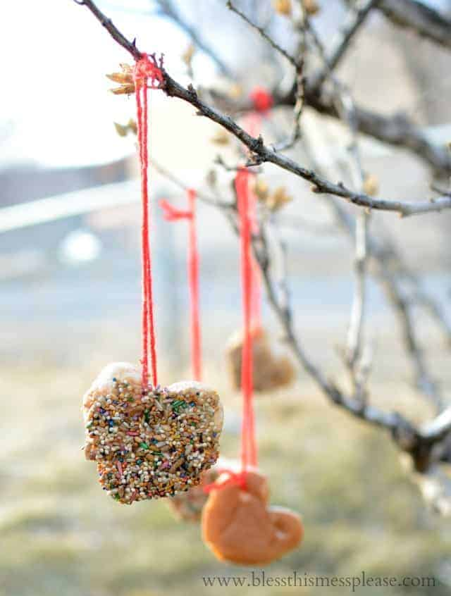 Simple DIY Bird Feeder that is fun to make and a blast to watch the birdies enjoy | www.blessthismessplease.com
