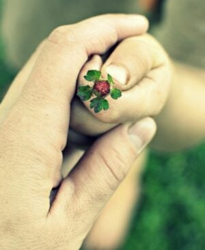An adult hand wrapped around a child's hand holding a tiny wild strawberry with leaves