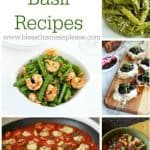 Title Image for 19 Basil Recipes with images of five basil recipes