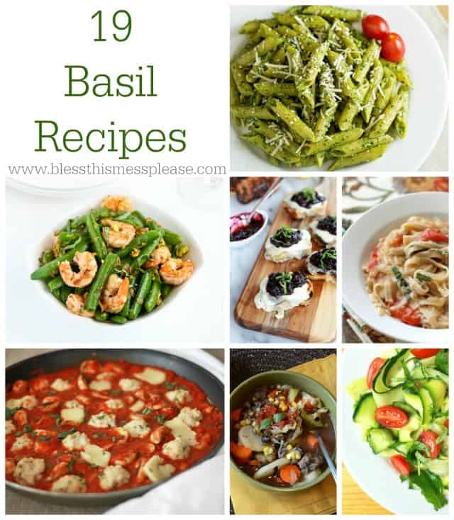 19 Beautiful Basil Recipes
