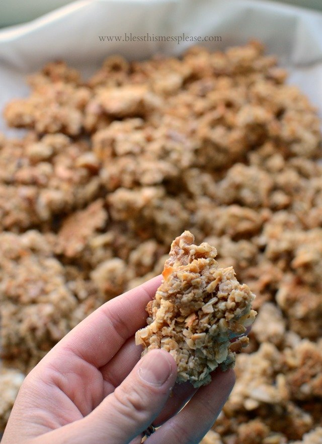 Extra Chunky and Naturally Sweetened Granola with Walnuts