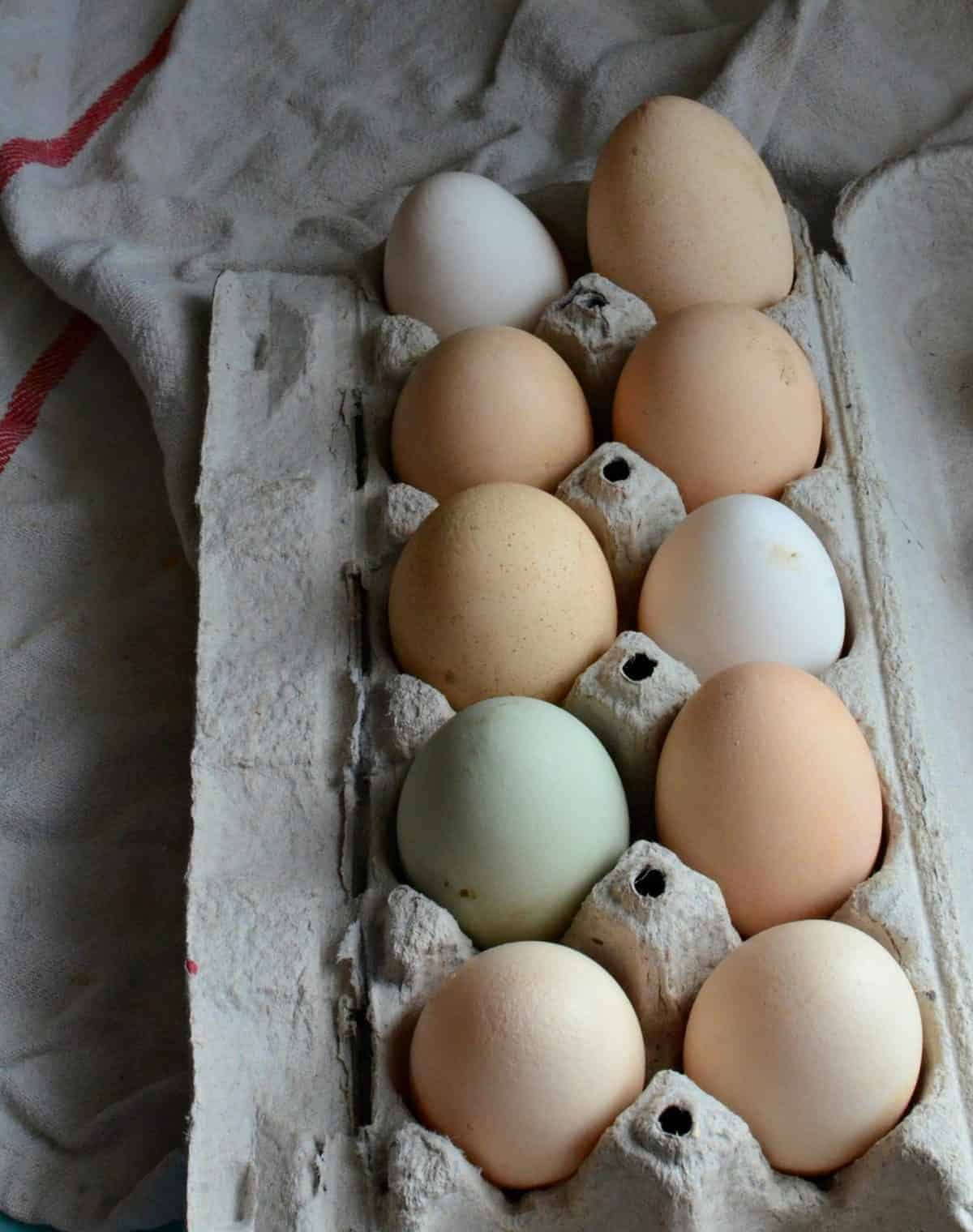 Boil Eggs At High Altitude €� Coloradomoms How To Test The Freshness Of An Egg  How