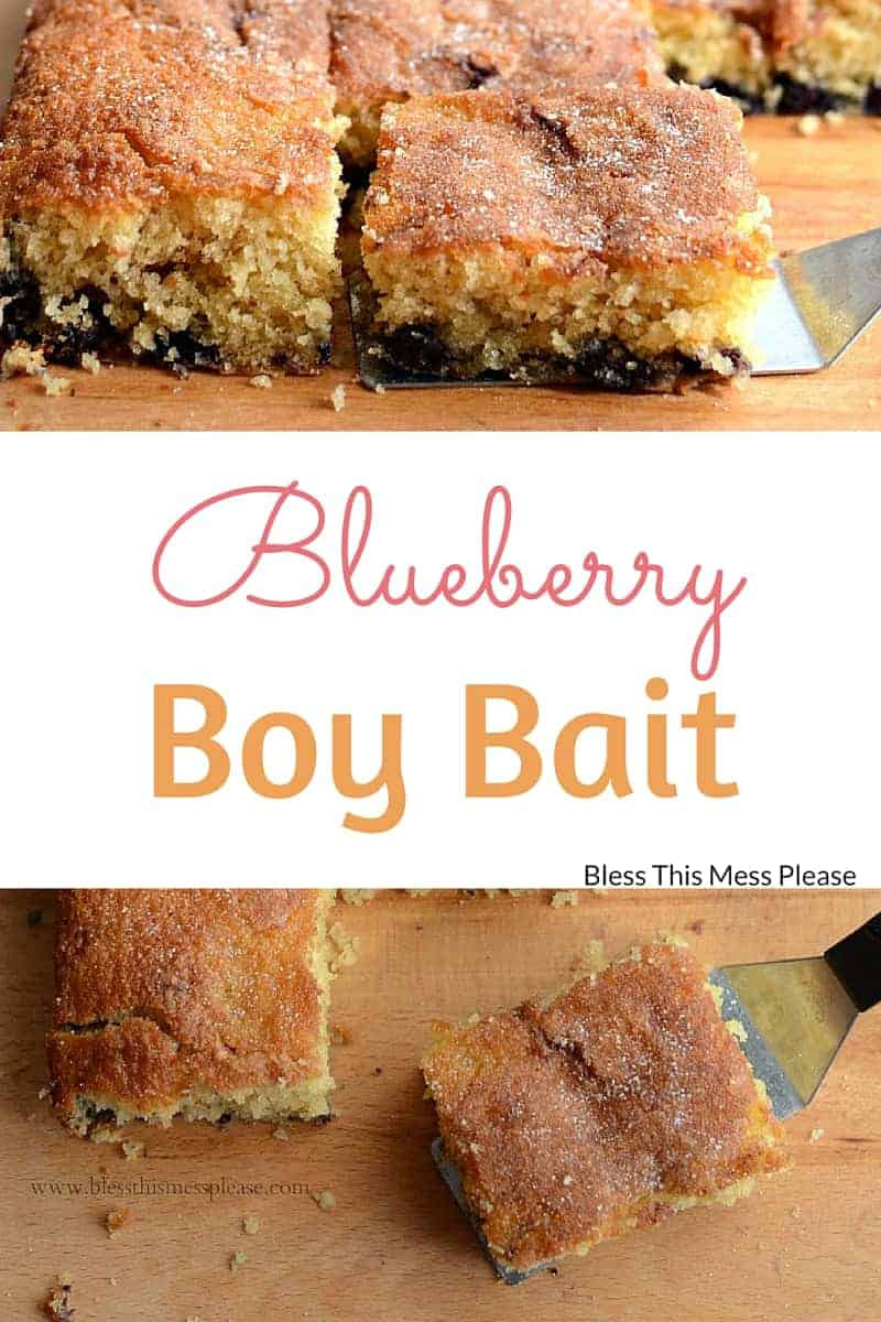 Blueberry Boy Bait