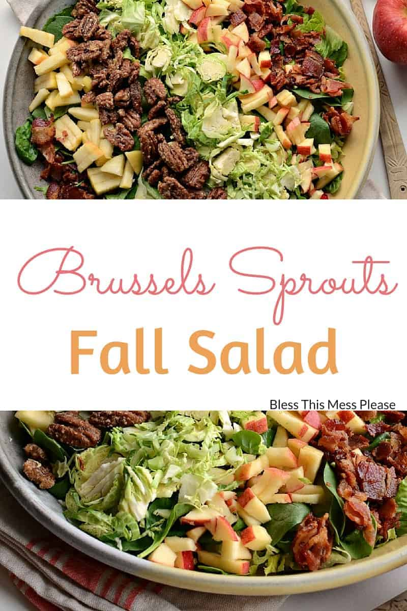 Fall pasta salad - That S Salad Perfection Right There Enjoy Friends