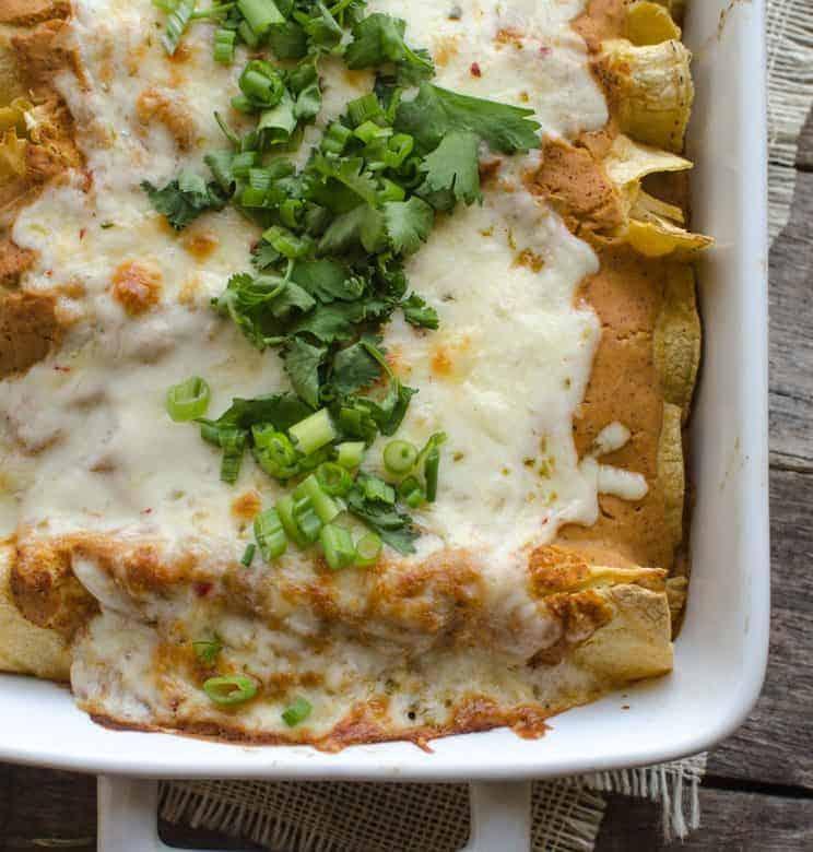 Creamy Pumpkin Chicken Enchiladas