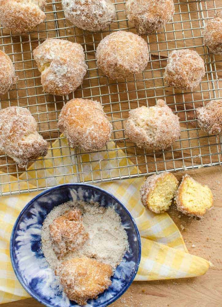 Simple Pumpkin Donut Holes