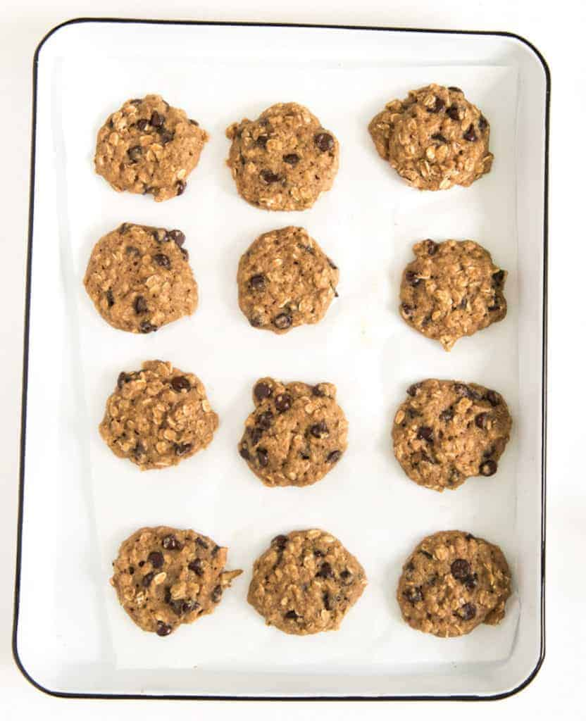 A dozen applesauce cookies with oats and chocolate chips on a white baking sheet