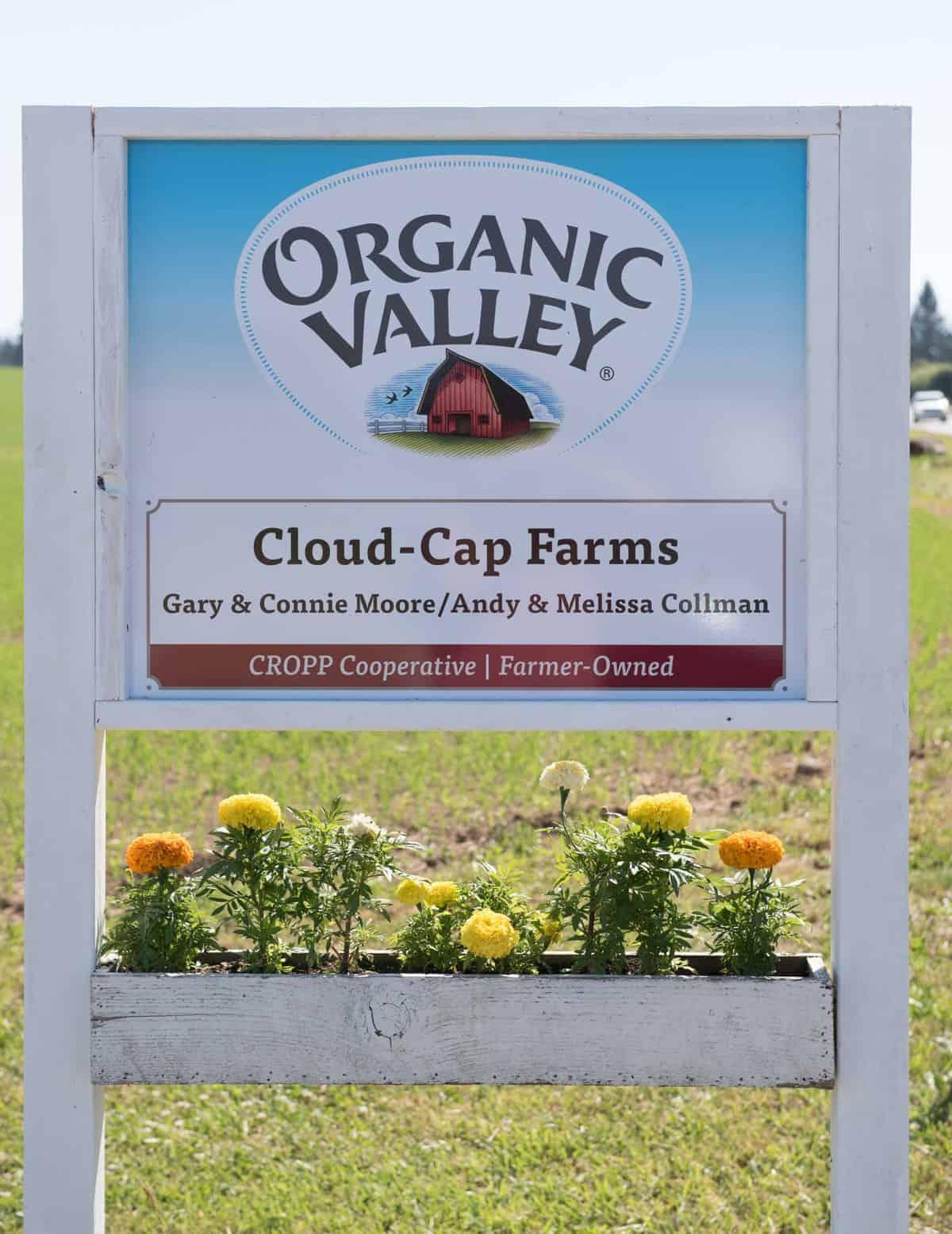 Organic dairy farm tour!