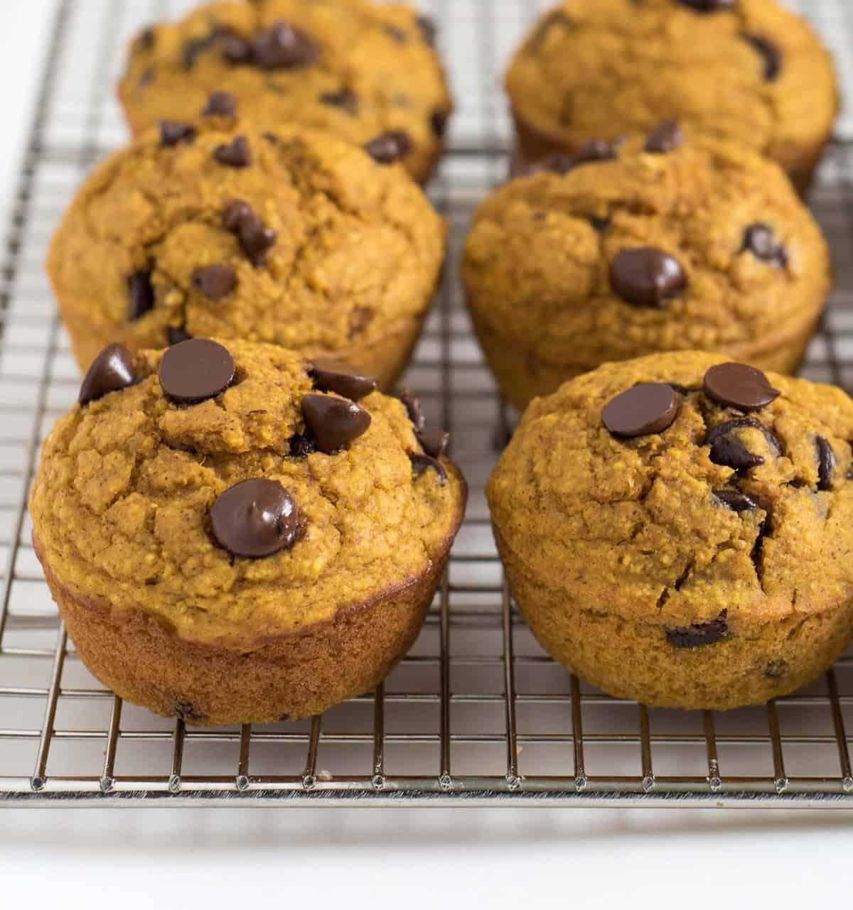 Pumpkin Blender Muffins Image