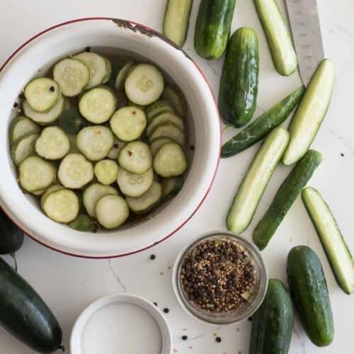 Quick Dill Refrigerator Pickles