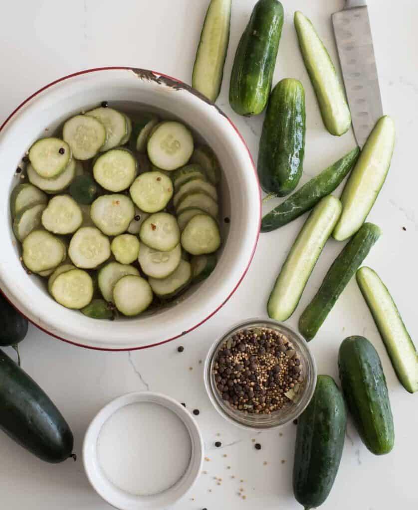 Homemade Refrigerator Pickles Recipe