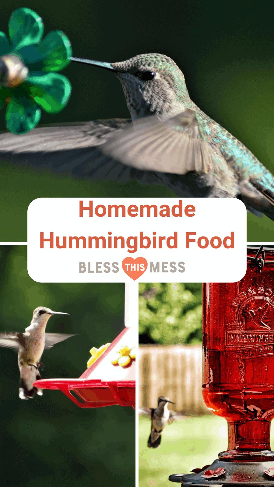Best Homemade Hummingbird Food Recipe