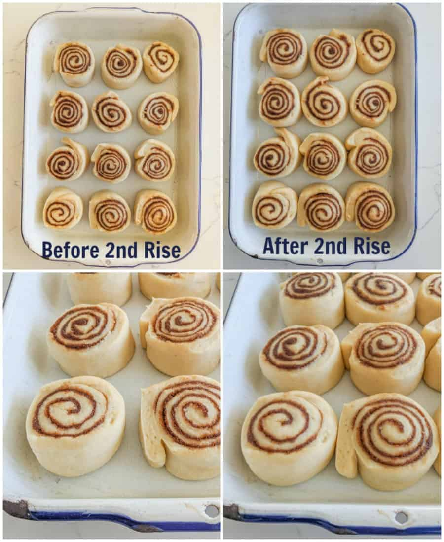Four photos, upper left-hand picture shows what the cinnamon rolls look like from above before the second rising. The bottom left-hand picture is a closeup of how they should look. The top right-hand picture shows an above view of the cinnamon rolls, after the second rise and below that is a closeup of how the should look.