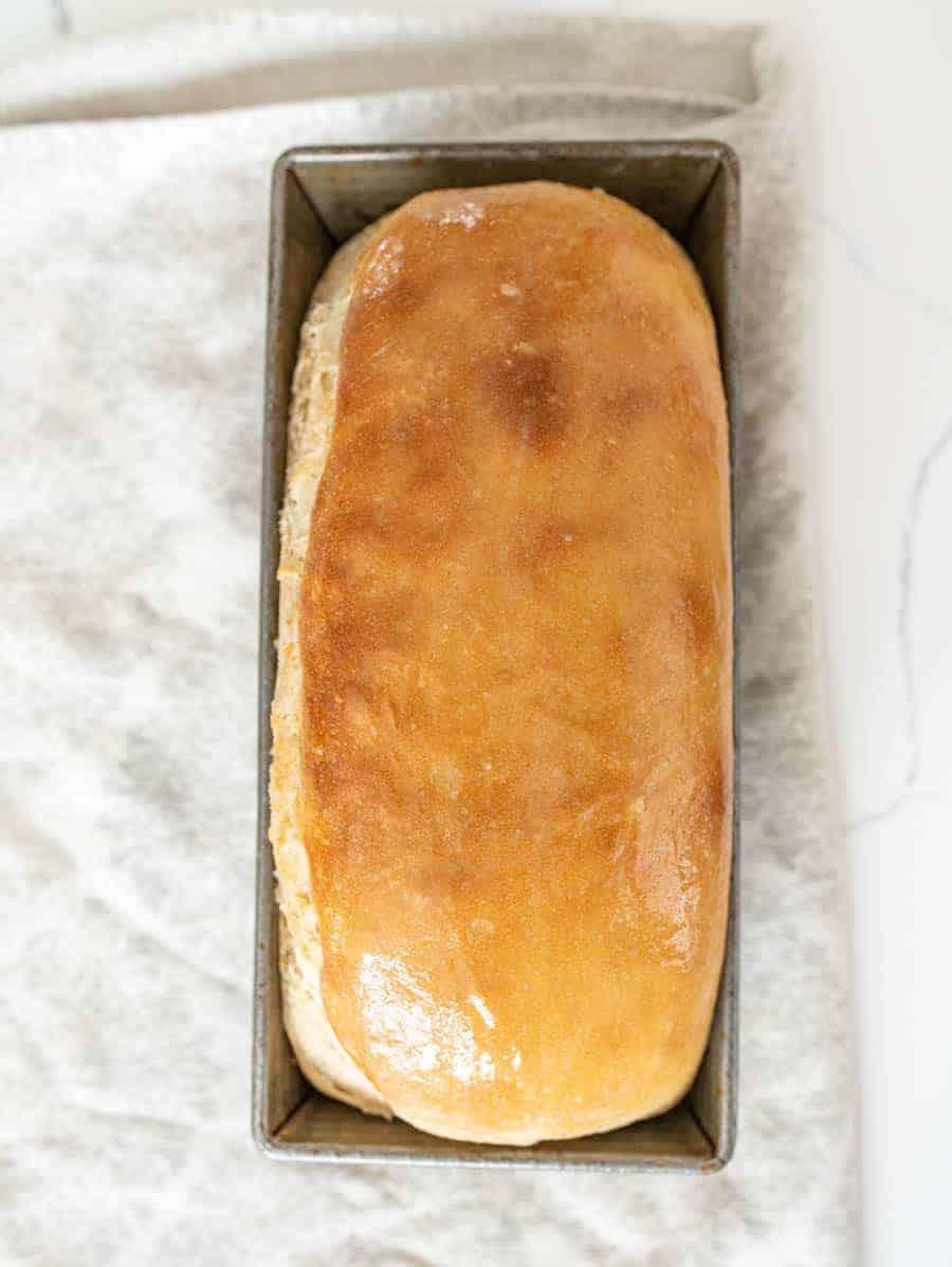 sourdough bread loaf in baking pan
