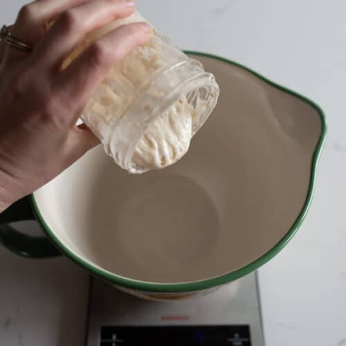 Sourdough Bread Troubleshooting and FAQs