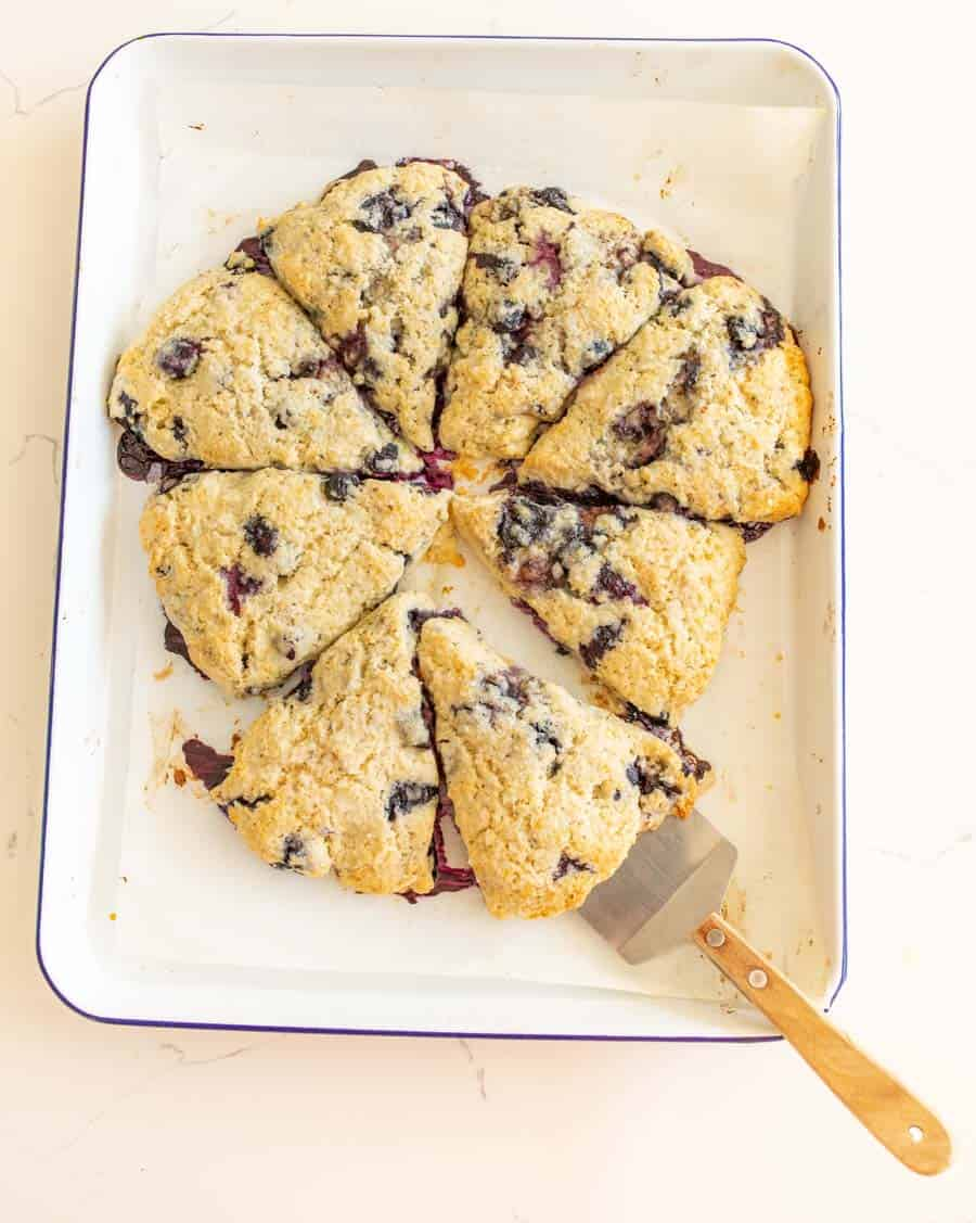 blueberry scones cut on white baking sheet with serving utensil