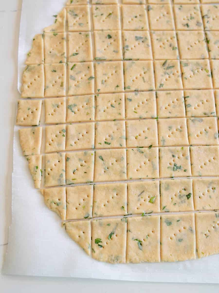 uncooked sourdough crackers before baking