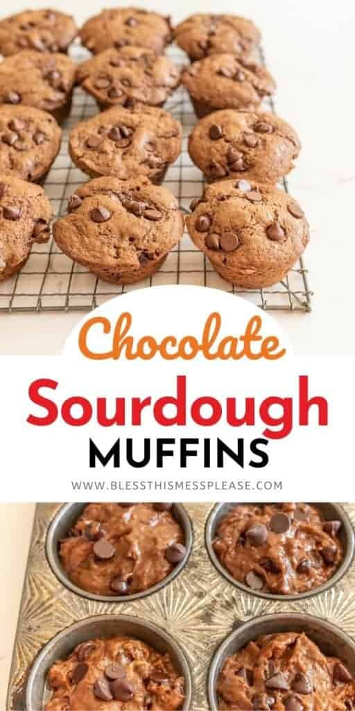 collage of muffins with title on top