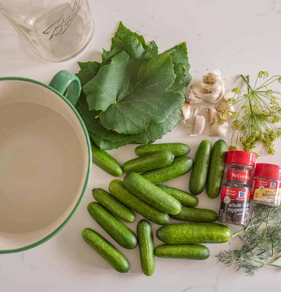 ingredients needed to make pickles on table
