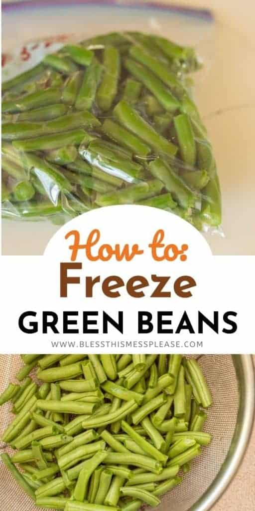 green beans in a freezer bag and in a strainer