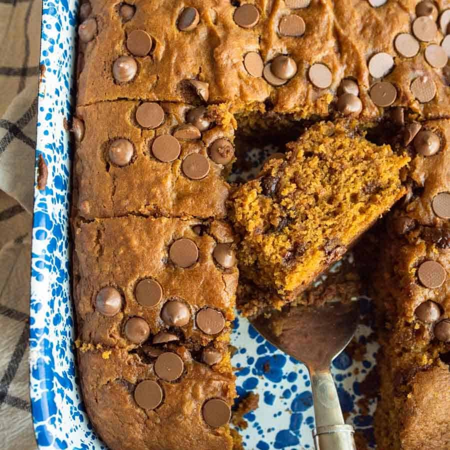 One Bowl Chocolate Chip Pumpkin Cake
