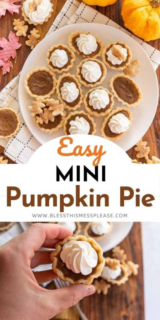 mini pumpkin pie recipe pin for pinterest