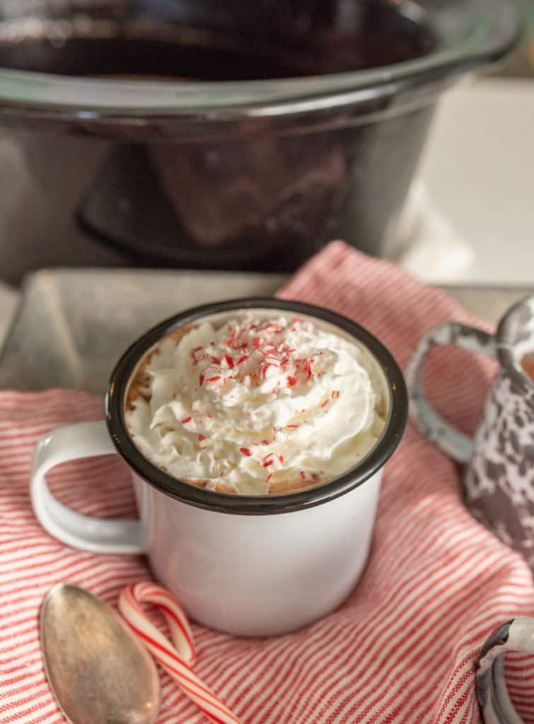 mug of crock pot hot chocolate with whipped cream on top