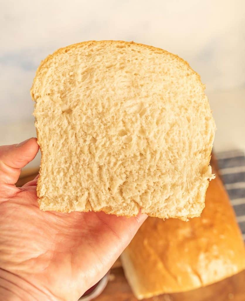hand holding a slice of white sandwich bread