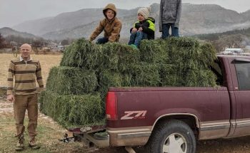 hay on the back of the truck
